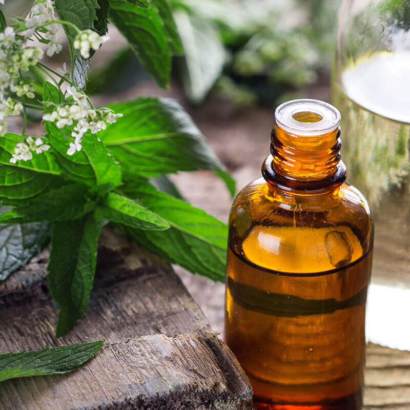 Aromatherapy and Healing Essential Oils